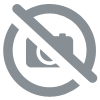 tableau violon gris orange